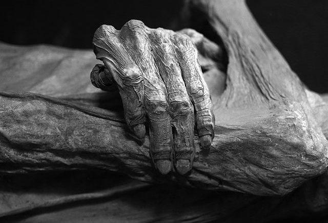 Bones laid to rest