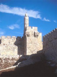 Citadel David