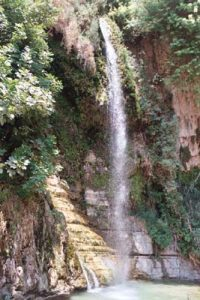 En Gedi Waterfall
