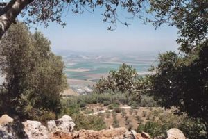 Jezreel Valley from Mt Carmel