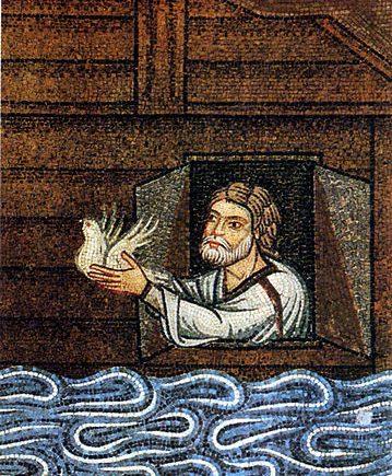 Noah releases dove